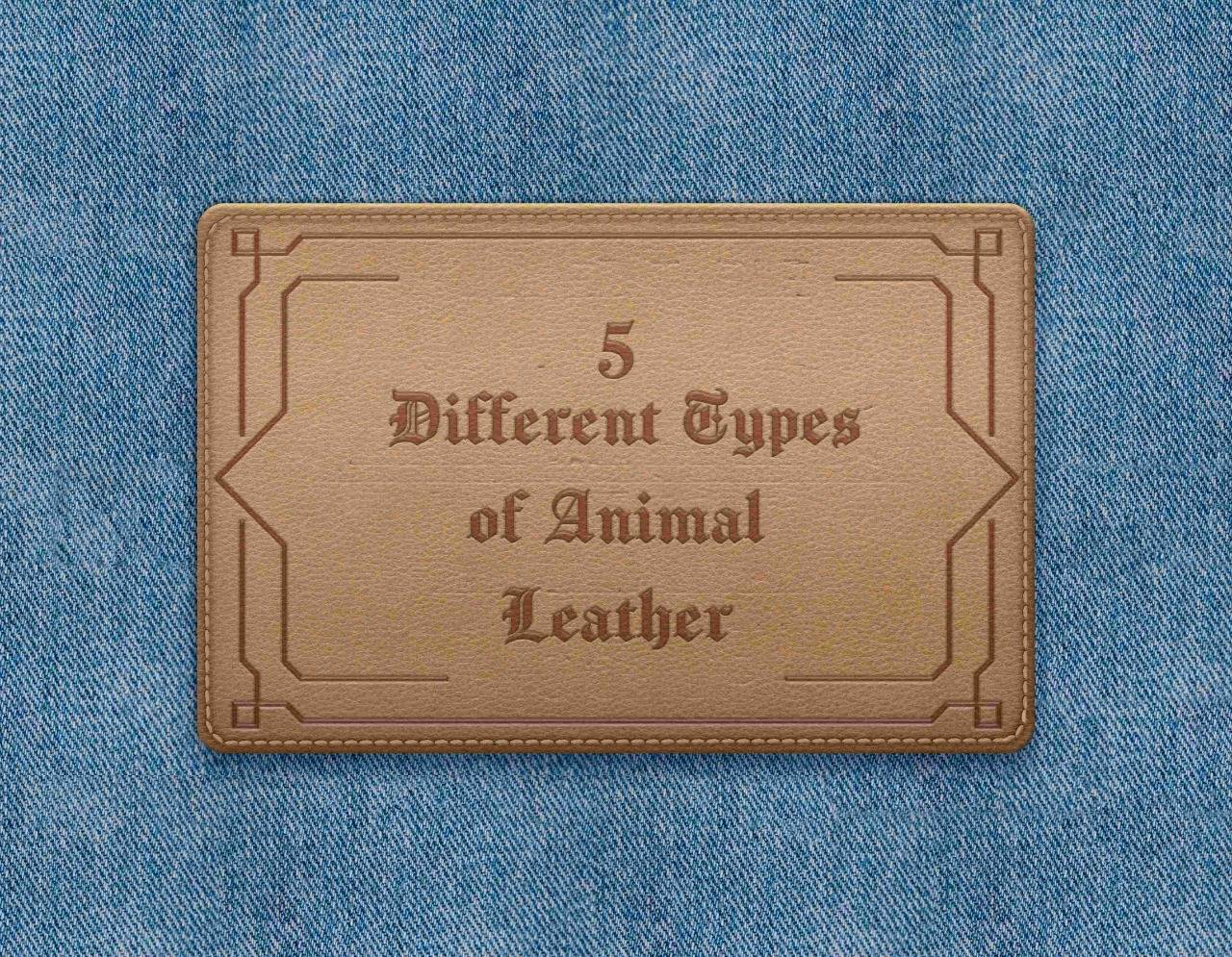 5 Different Types of Animal Leather And Their Uses